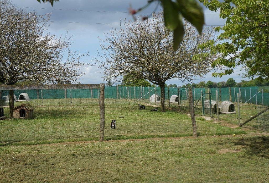 Parcs extérieurs de l'élevage